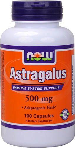 Now Astragalus 500mg 100 cápsulas